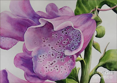 Foxgloves  Poster