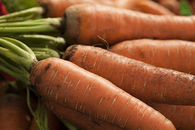 Fresh Carrots Poster by Brian Yarvin