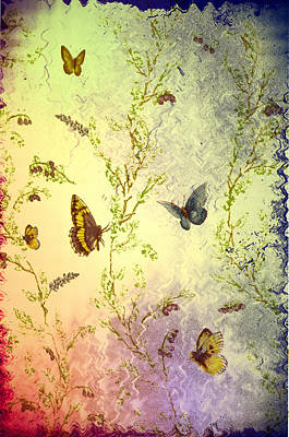 Frolicing Butterflies Poster by Bill Cannon