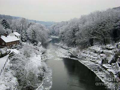 Frosted Trees At Ironbridge Poster