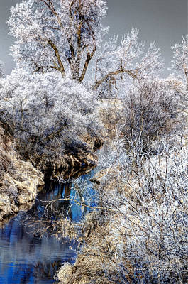 Frosty Logan Creek Poster by Terrie Galvin