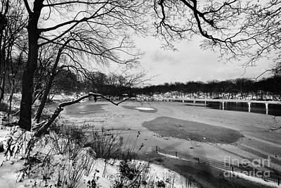 Frozen Central Park At Dusk Poster by John Farnan