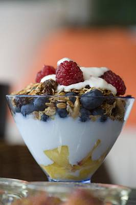 Fruit And Granola In Yogurt Poster by Keith Levit