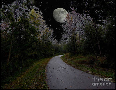 Full Moon Over Forest Trail Poster by Cedric Hampton