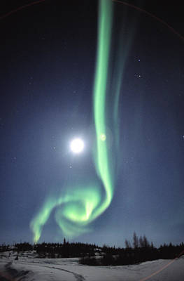 Full Moon With Aurora In Yellowknife Poster by Robert Postma