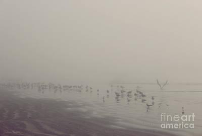 Galveston Island Foggy Morning Poster
