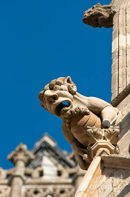 Poster featuring the photograph Gargoyle by Andrew  Michael
