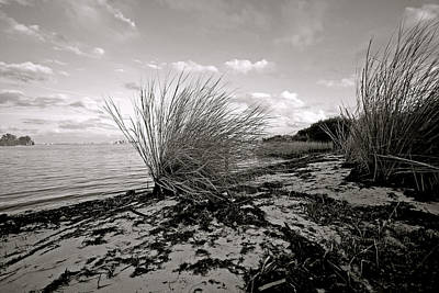 Gentle River Tide Poster