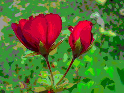 Geranium Flower And Bud Closeup Poster by Padre Art