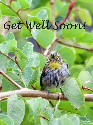 Get Well Soon Poster by Dan McManus
