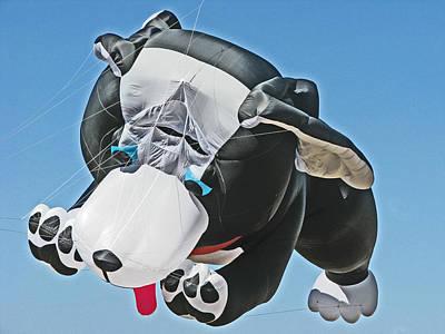 Giant Black And White Dog Kite 1 Poster