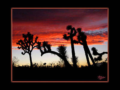 Giants Of Joshua Tree Ca Poster