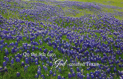 God Created Texas Bluebonnets Poster