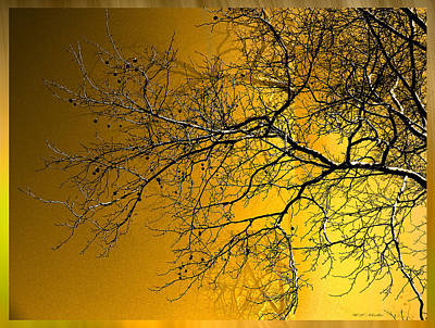 Golden Walnut Tree Poster by Heinz G Mielke