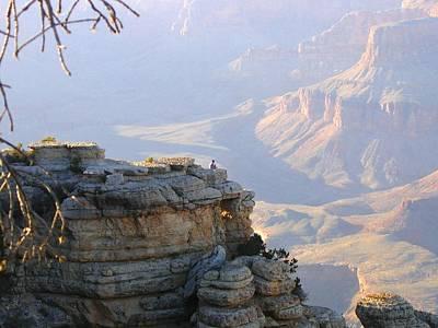 Grand Canyon 38 Poster