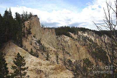 Grand Canyon Cliff In Yellowstone Poster by Living Color Photography Lorraine Lynch
