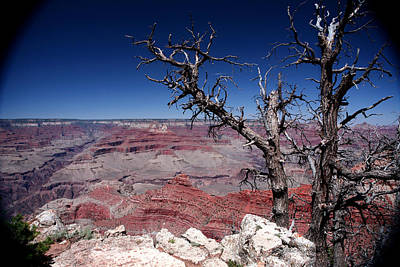 Poster featuring the photograph Grand Canyon Number One by Lon Casler Bixby