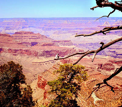 Poster featuring the photograph Grand Canyon by Rima Biswas
