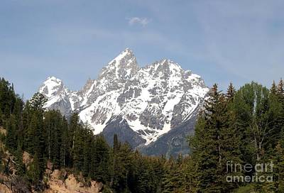 Grand Tetons Poster by Living Color Photography Lorraine Lynch