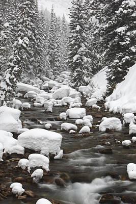 Granite Creek In Winter, Briger-teton Poster by Drew Rush