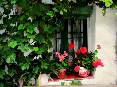 Grape Vines An Geraniums Frame A Window Poster by Elaine Plesser