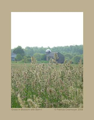 Poster featuring the photograph Grass In Blossom With Barn-i by Patricia Overmoyer
