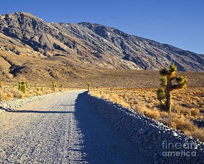 Gravel Road In Desert Poster by David Buffington