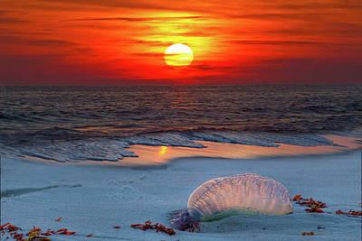 Grayton Beach Sunset IIi Poster by Charles Warren
