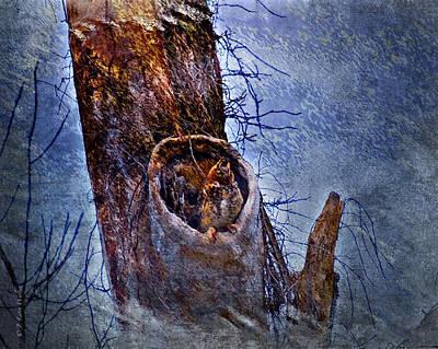 Great-horned Owl Nest Poster by J Larry Walker