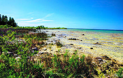 Poster featuring the photograph Great Lakes Summer Shoreline by Janice Adomeit