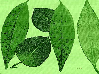 Green Foliage Graphic Poster by Chris Berry