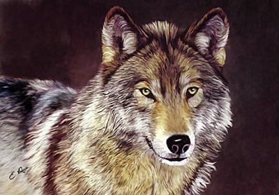 Grey Wolf Poster by Ellens Art