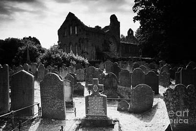 Greyabbey Abbey Ruin Graveyard Cemetary Ireland Poster by Joe Fox