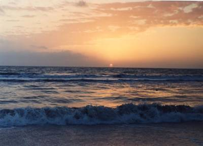 Poster featuring the photograph Gulf Coast Sunset by Lynnette Johns