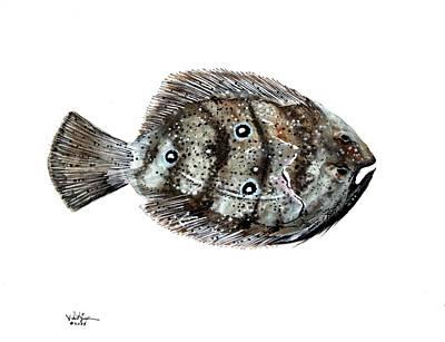 Gulf Flounder Poster