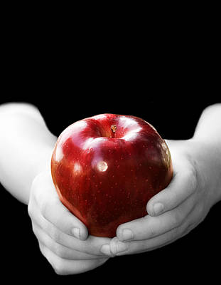 Hands Holding Apple Poster by Trudy Wilkerson