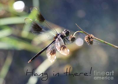 Hang In There Card Poster by Carol Groenen