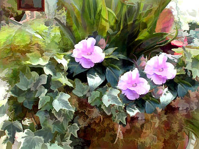 Hanging Basket Of Impatiens And Ivy Poster by Elaine Plesser