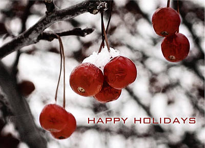 Happy Holidays Berries Poster
