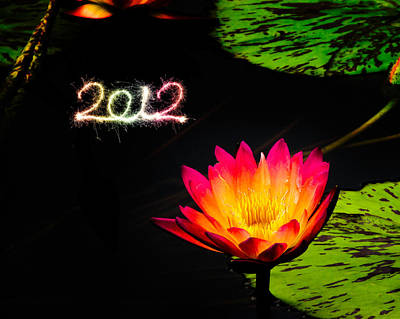 Poster featuring the photograph Happy New Year 2012 by Michael Taggart