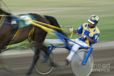 Harness Racing 2 Poster by Bob Christopher