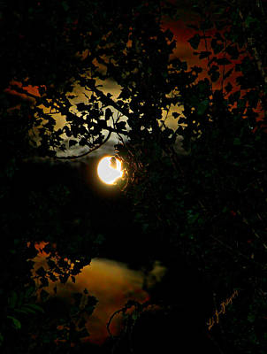 Poster featuring the photograph Haunting Moon IIi by Jeanette C Landstrom