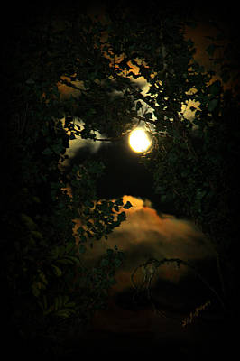 Haunting Moon Poster by Jeanette C Landstrom