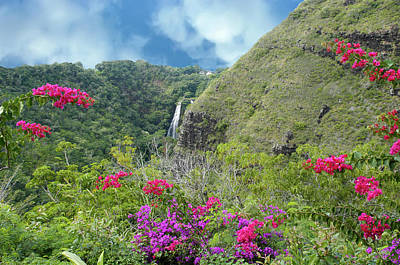 Poster featuring the photograph Hawaii Waterfall by Geraldine Alexander