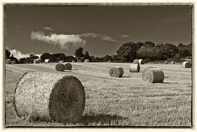 Hay Bales In Sepia Poster