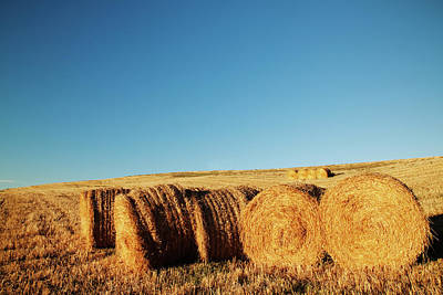 Hay Bales Poster by Matteo Colombo