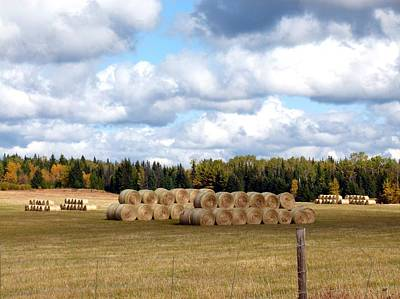 Hay Bales Poster by Will Borden