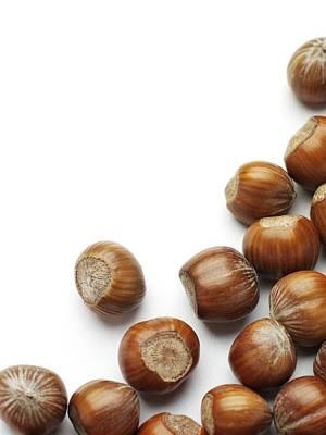 Hazelnuts Poster by Jon Stokes