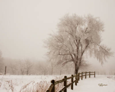 Hazy Winter Day Poster by Jeff Swanson