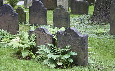 Headstones And Ferns Poster by Teresa Mucha